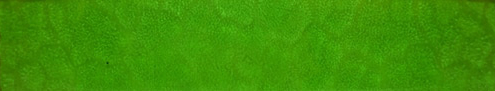 Κρύσταλλα καθεδράλ πράσινο